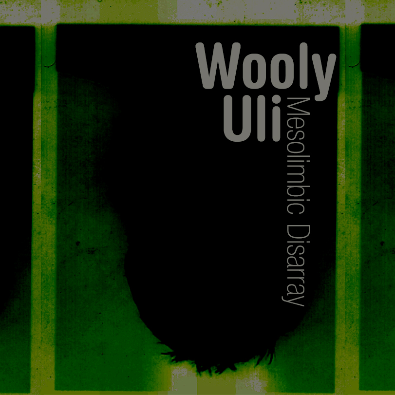 MMx041 Wooly Uli – Mesolimbic Disarray